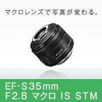 http://cweb.canon.jp/ef/common/img/banner/bnr-ef-s35-f28.jpg