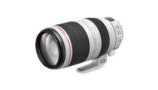EF100-400mm F4.5-5.6L IS II USM 商品詳細へ
