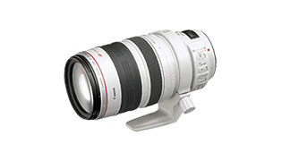 EF28-300mm F3.5-5.6L IS USM 商品詳細へ