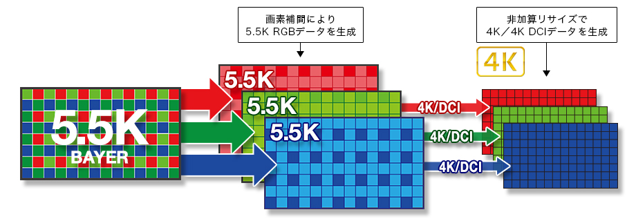 https://cweb.canon.jp/eos/lineup/1dxmk3/image/feature-over-sampling.jpg