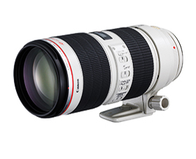 写真:EF70-200mm F2.8L IS III USM