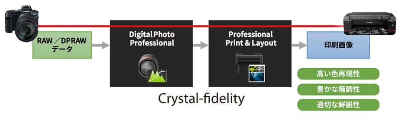 RAW/DPDRAW データ→Crystal-findelity(Digital Photo Professional→Professional Print&Layout)→印刷画像:高い色再現性/豊かな階調性/適切な鮮鋭性